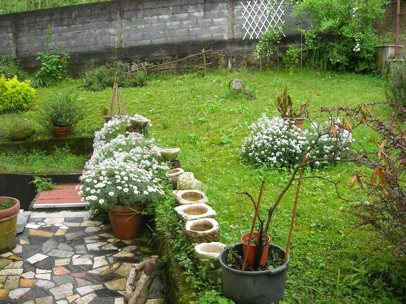 Semola angoli di giardino - Angoli di giardino ...