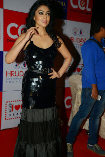 Actress Shriya Saran Latest Picture in Black Long Dress at CCL Charity Dinner 24
