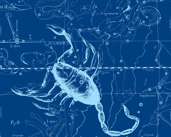 Созвездие Скорпиона | статья. Автор Андрей Климковский