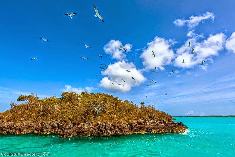 Turks And Caicos Resorts: Fantastic Nature Photography of Chalk Sound