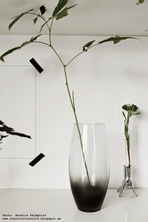 skata, skator, diy vas, gör det själv, tillverka, göra nytt, inspiration, hylla, hyllor, svart och vitt, svartvita, konsttryck, poster, posters, print, prints, tavla, tavlor, fågel, fåglar, på hyllan, gröna växter, grönt, blad, kvistar,
