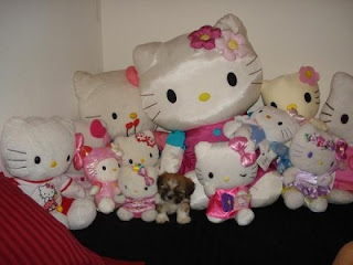 Small puppy dog with Hello Kitty plush soft toy collection