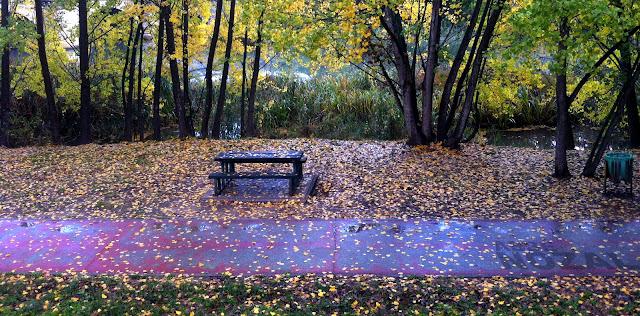 Ver pasar el otoño, 2015 Abbé Nozal