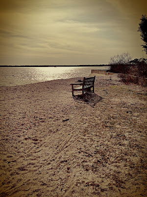 Beach Bench - Flotsam of the Mind