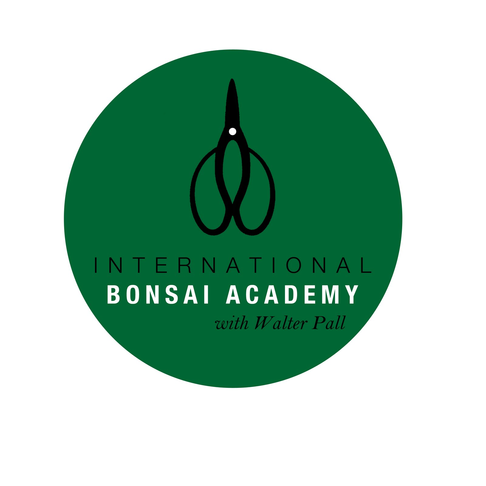 Walter Pall Bonsai Adventures Logo For Bonsai Academy 20