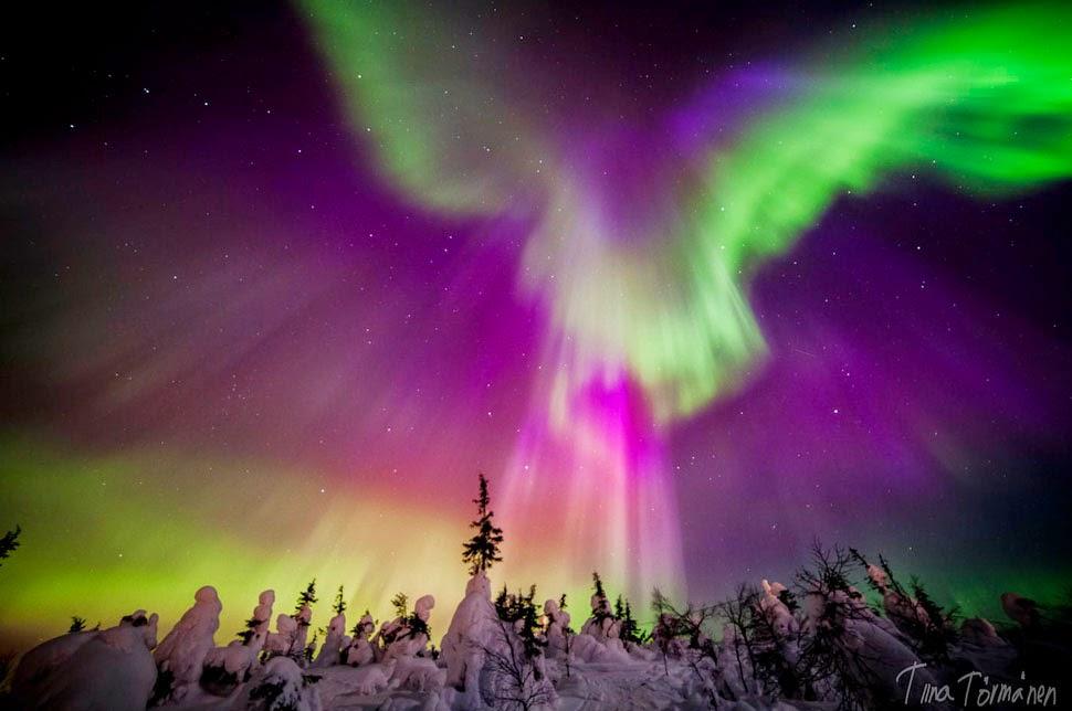 Shimmering Aurora in Enigmatic Lapland, Finland