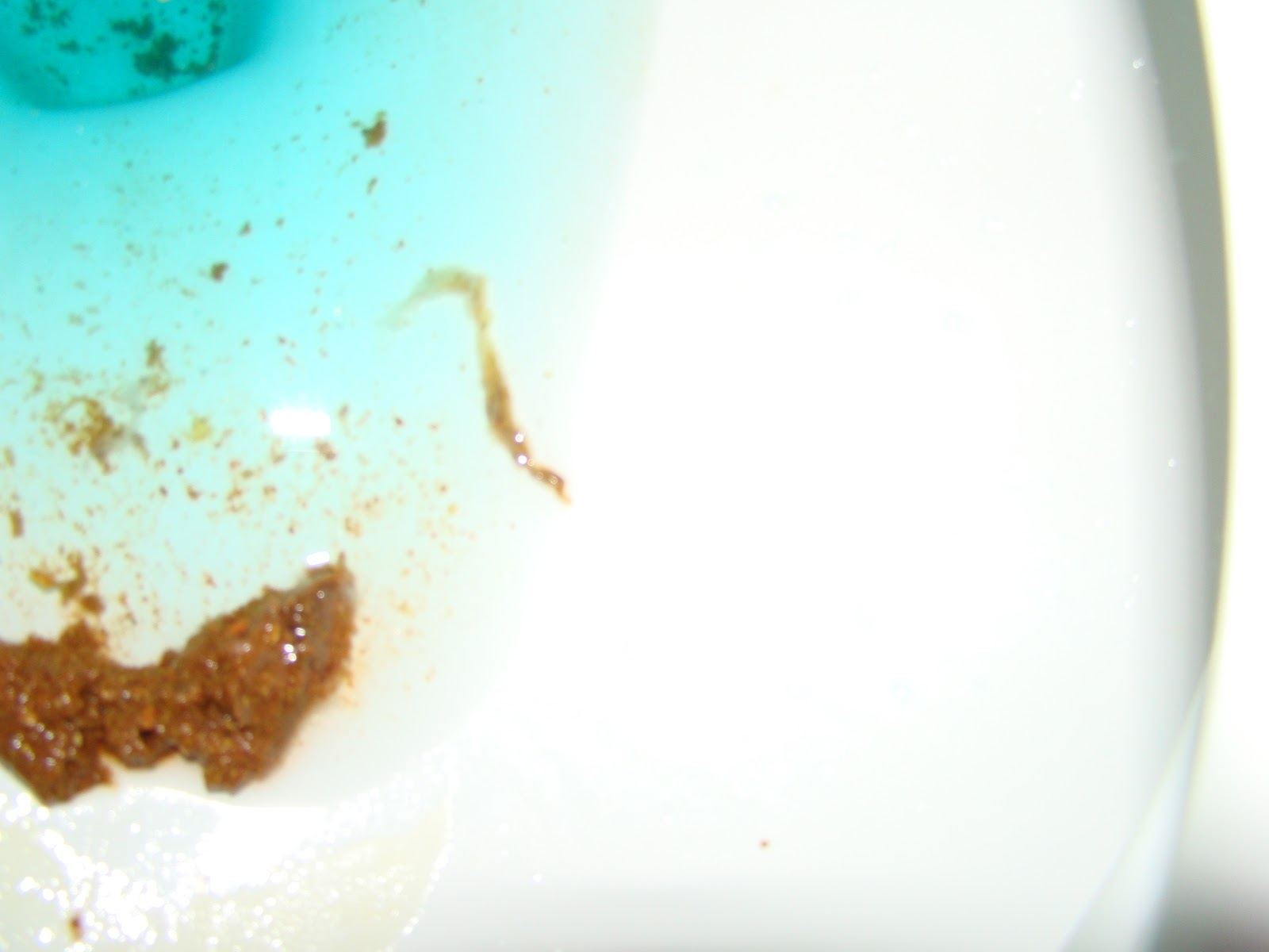 Human Poop With Tapeworm