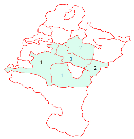 Guide of Mushrooms and Mushrooms of Navarre .: Geastrum schmidelii Vittad.