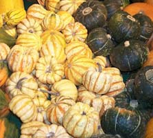 Weight Loss Recipes : Simply Winter Squash