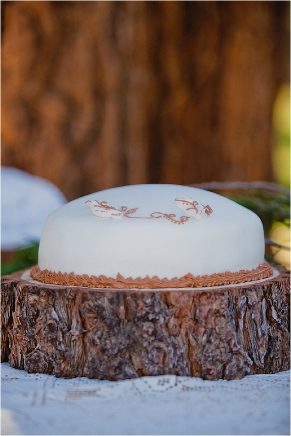 wedding cake // photo credit: Bethany Carlson Photography
