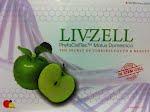 LIV-ZELL
