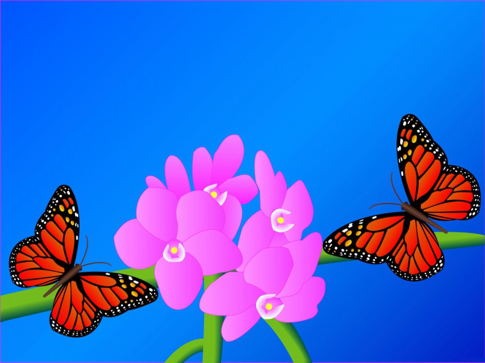 http://3.bp.blogspot.com/-wQr2SjA7OLc/TzmBYKQPO5I/AAAAAAAAEZQ/lD2RrryBPuM/s1600/The-best-top-desktop-butterflies-wallpaper-hd-butterfly-wallpaper-13.jpg