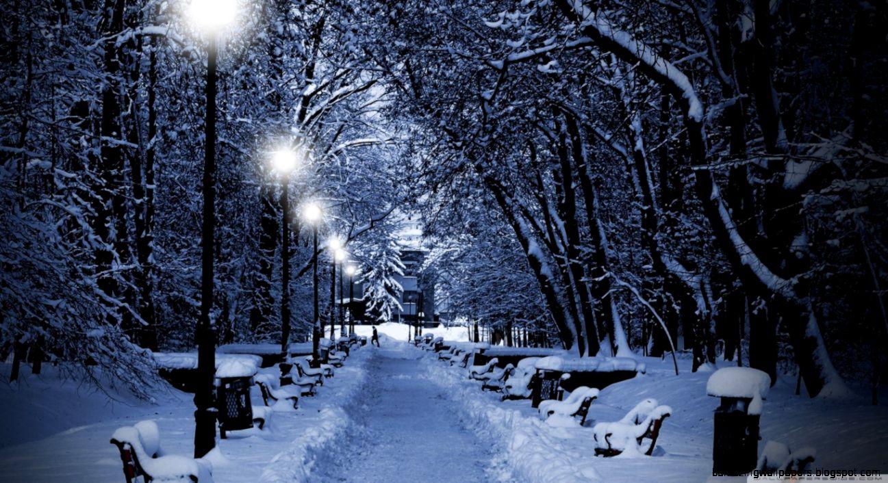Snowy Park At Night HD desktop wallpaper  High Definition