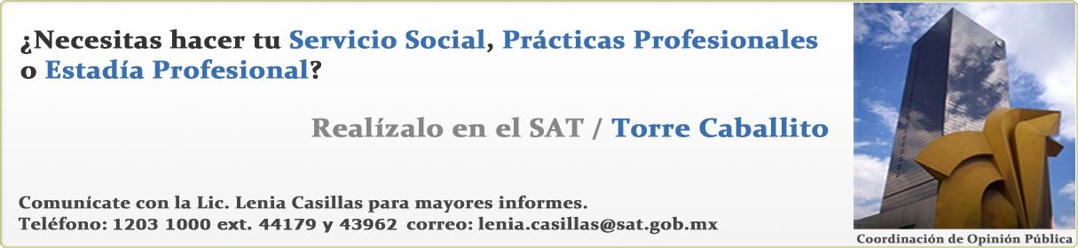 Servicio Social en el SAT / Torre Caballito