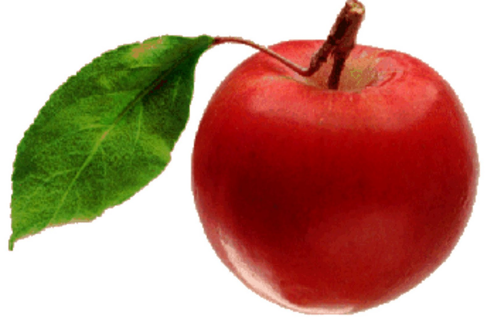 cel apple 5