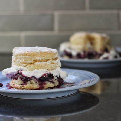 Cranberry Blueberry Shortcake with Coconut Whipped Cream