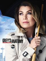 Assistir Grey's Anatomy 13 Temporada Online Dublado e Legendado