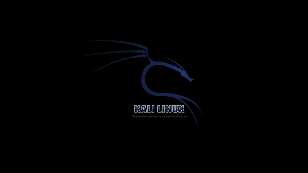 kali linux full book pdf
