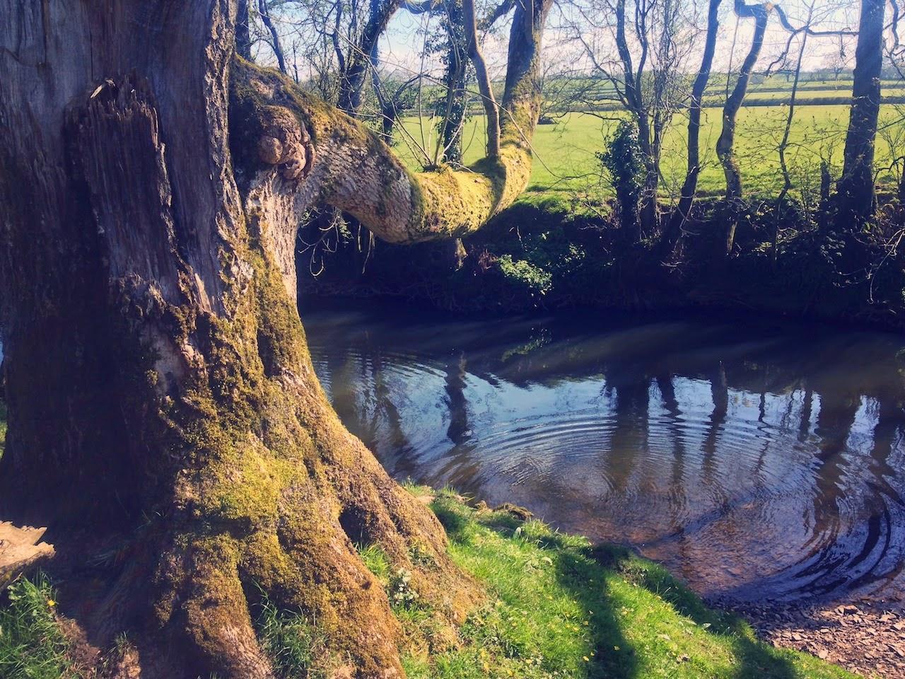 Strawbridge, hatherleigh, river