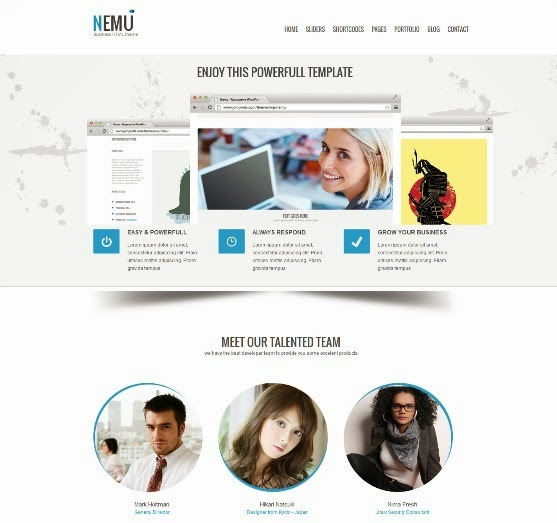 Nemu Responsive WordPress Theme