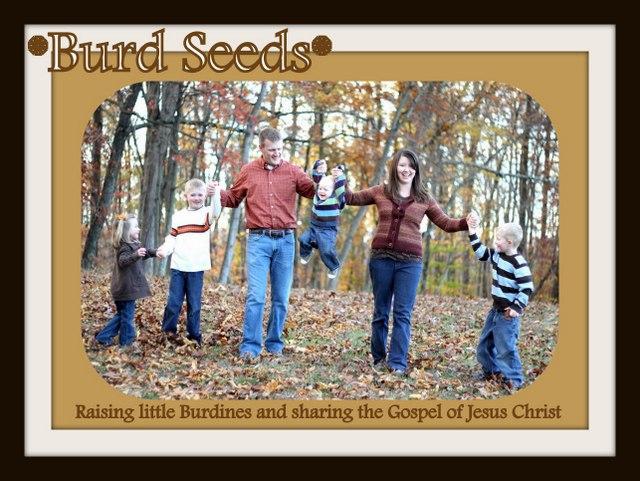 *Burd Seeds*