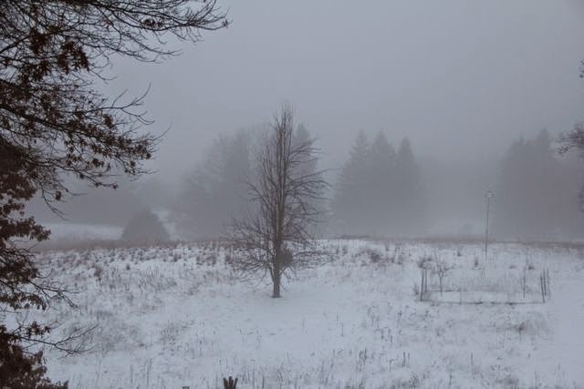 the mystery of Winter fog