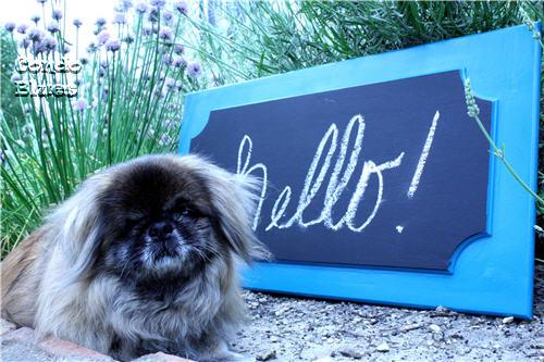 chalkboard paint chalkboard