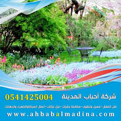 شركة تنسيق حدائق بالمدينة المنورة 0541425004