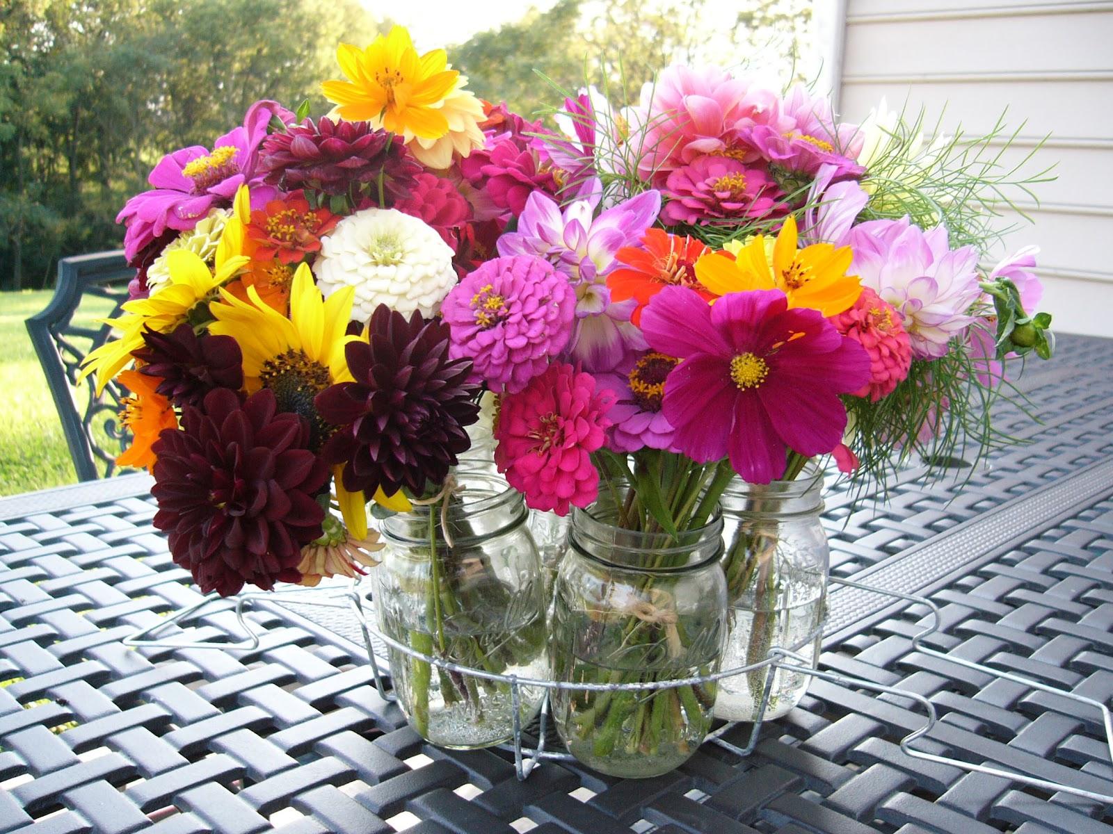 MintBasil Flower Garden September 2012