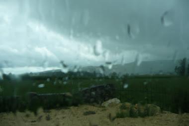 Flou d'été 2011