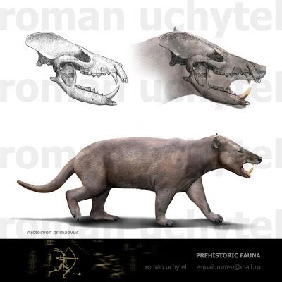 mamiferos del Paleoceno Arctocyon
