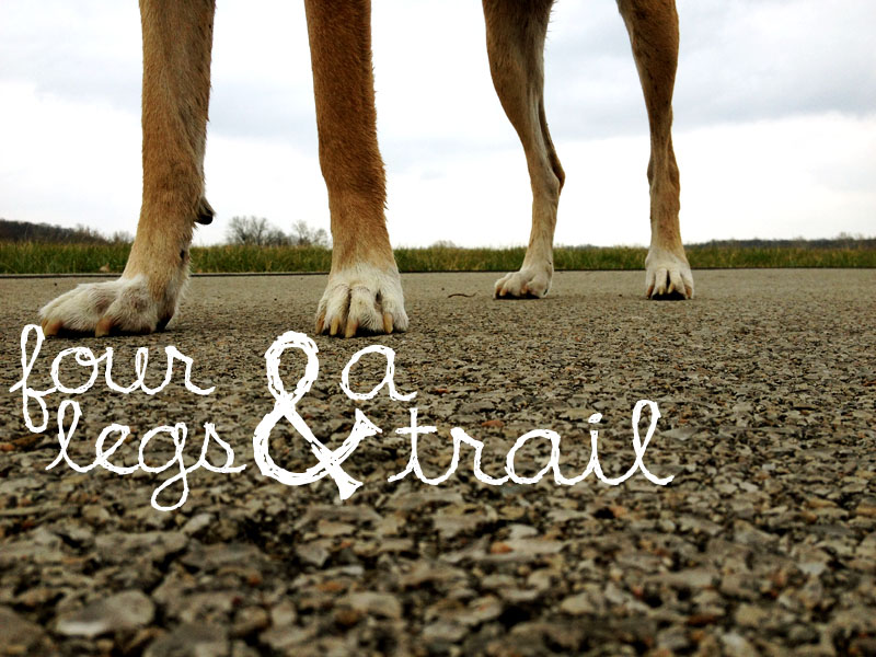 Four Legs &amp; a Trail