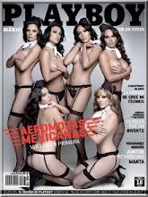 Las Aeromosas en Playboy