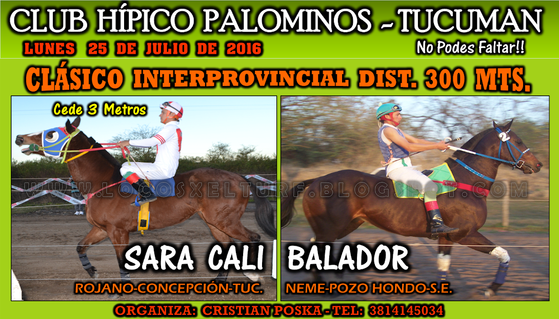 25-07-16-HIP. PALOMINOS-CLAS-