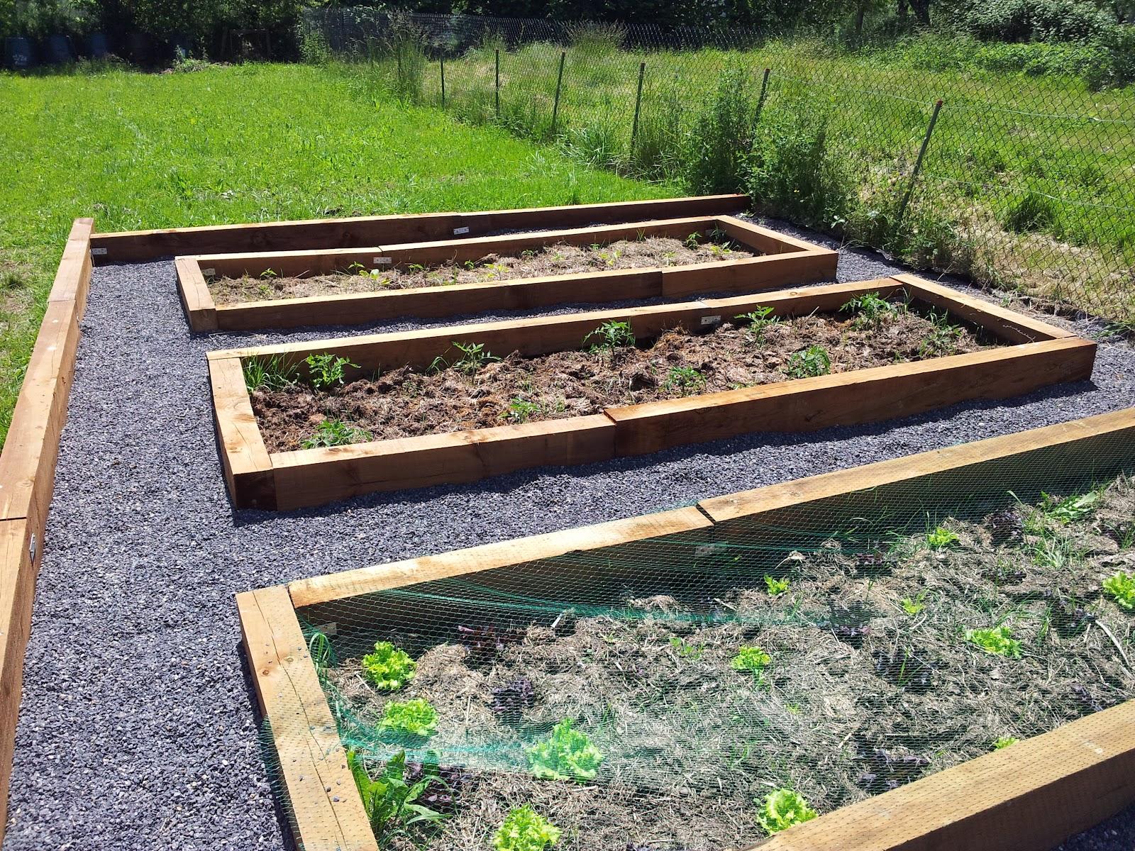 Sat trabajo en el huerto y jardines - Huerto y jardin ...