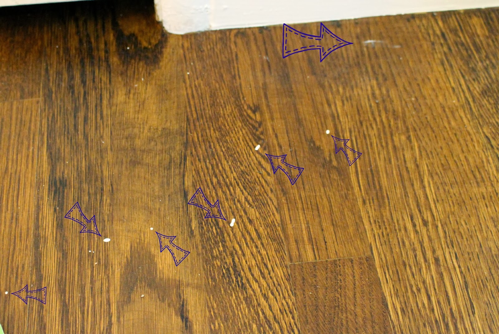 All Those Arrows Are Paint Spots On My Wood Floors!