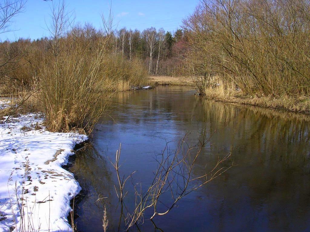 "<a href=""http://monitor.pogodynka.pl/hydro/map#/Przymorze"">Monitoring rzek Polski</a>"
