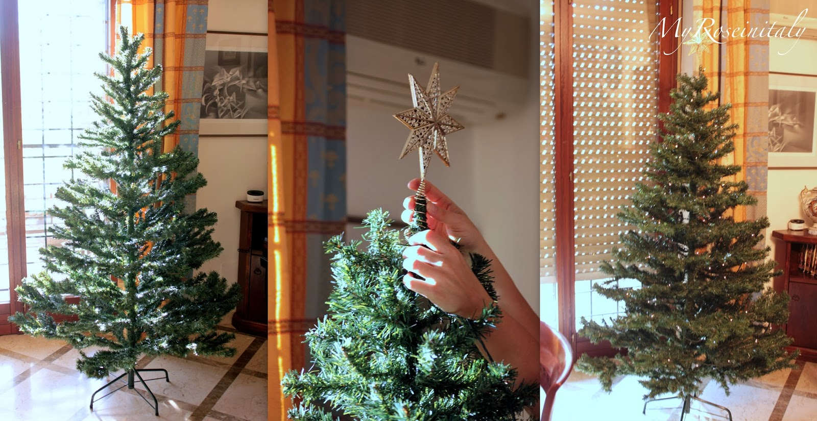 My roseinitaly come fare l 39 albero di natale for Albero di natale vero