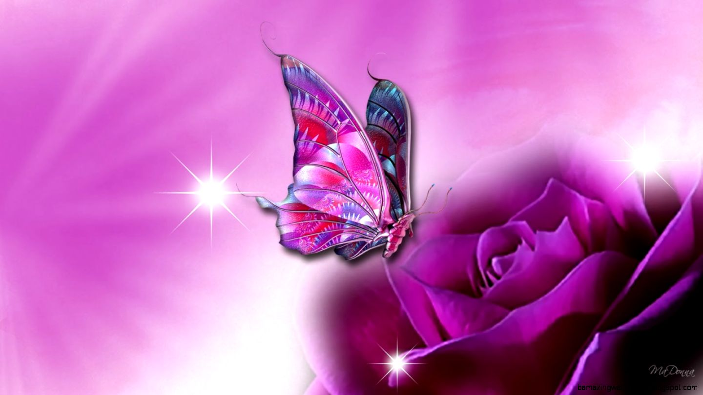 Bunch Of Purple Rose Flowers Amazing Wallpapers