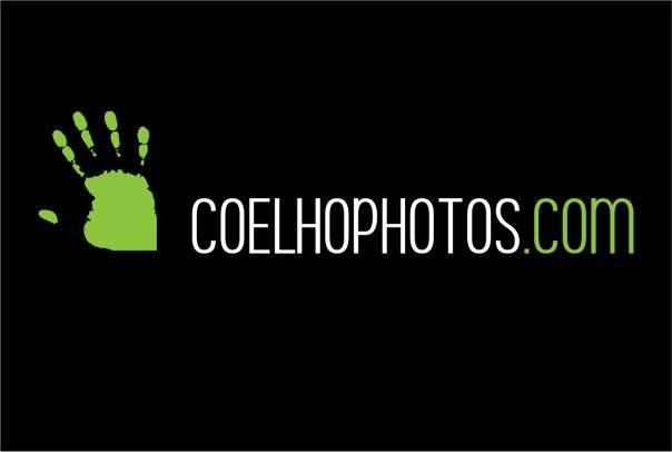 Coelho Photos