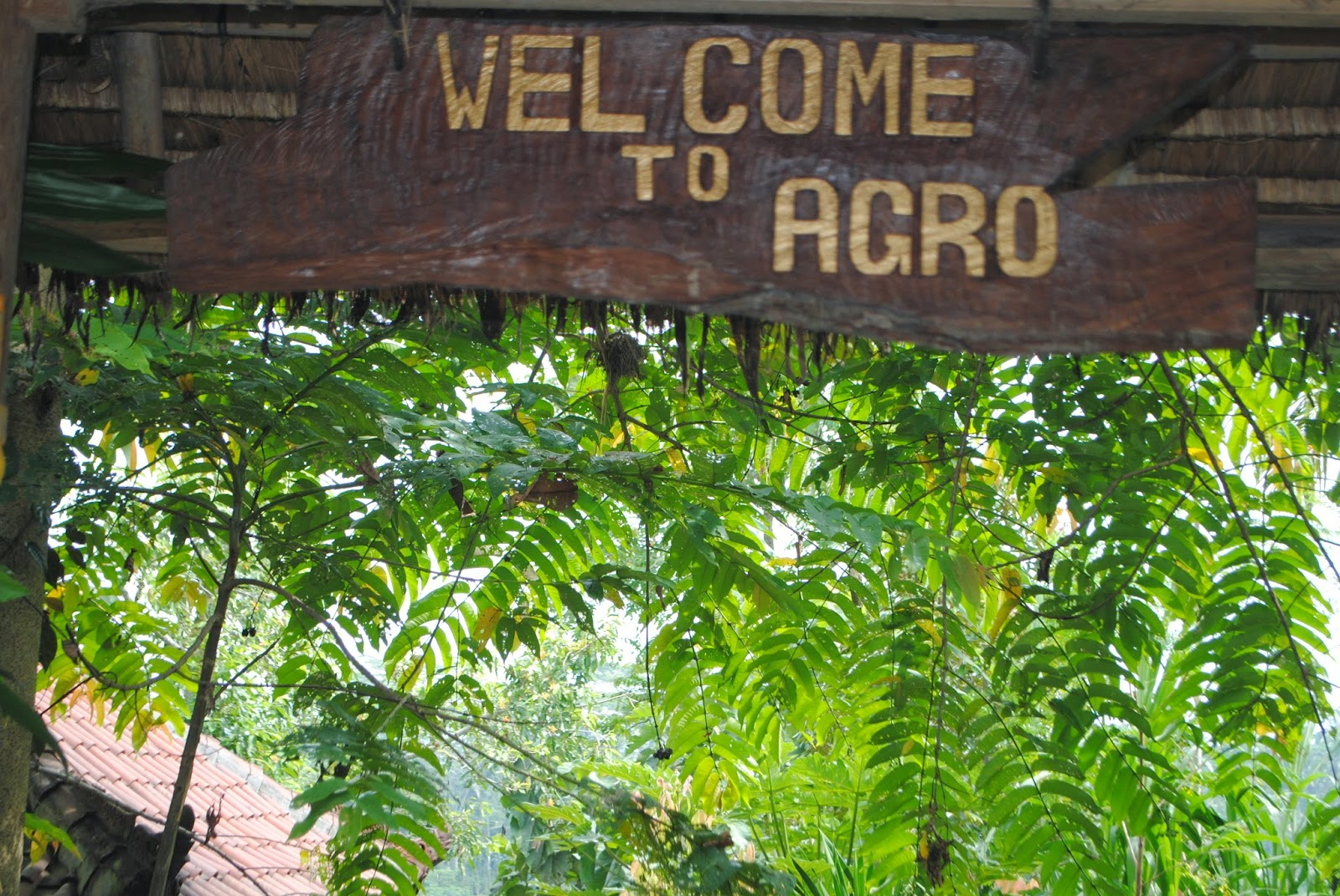 what is agro tourism tourism essay Agrotourism is also known as agritourism and farm-based tourism agrotourism is  actually the collaborations between tourism and agriculture.