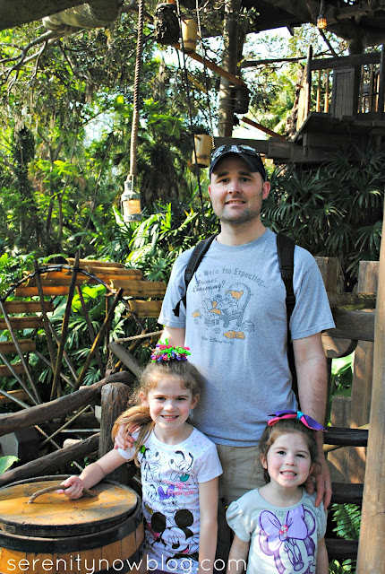 Magic Kingdom, Swiss Family Robinson Tree House, Serenity Now blog