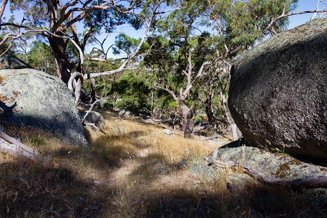 boulders on manna gum track