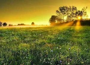 ธรรมชาติคือความสวยงามบนพื้นฐานความสมดุล