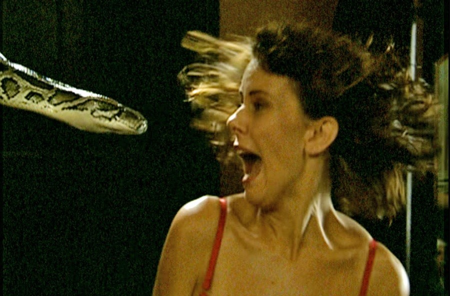 Cobras 2002 Filme DVDRip completo Torrent