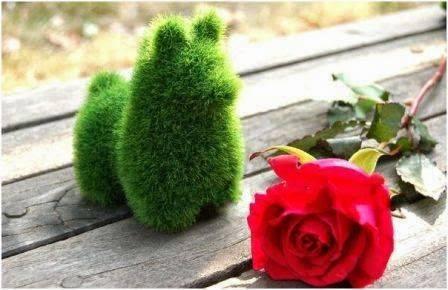 Boneka Rumput dengan bentuk binatang.