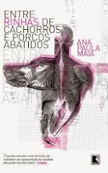 3º romance - ENTRE RINHAS DE CACHORROS E PORCOS ABATIDOS / 2009