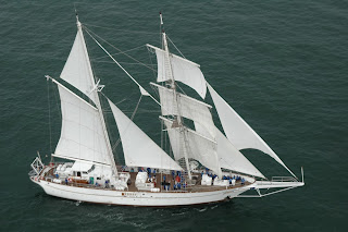 Kapal Layar Tertimpa Ikan Paus 40 Ton