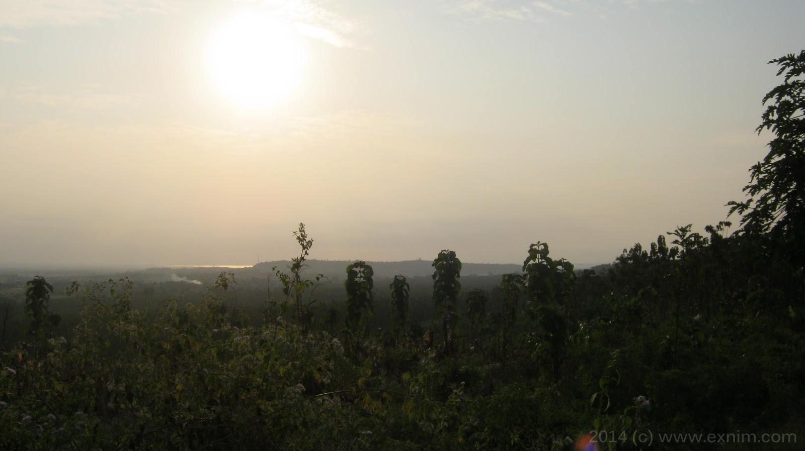 Foto panorama alam gunung-hutan