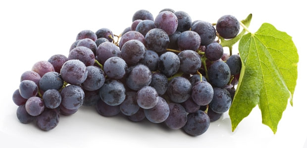 Researchers Find New Mechanism for Resveratrol  Health Benefits